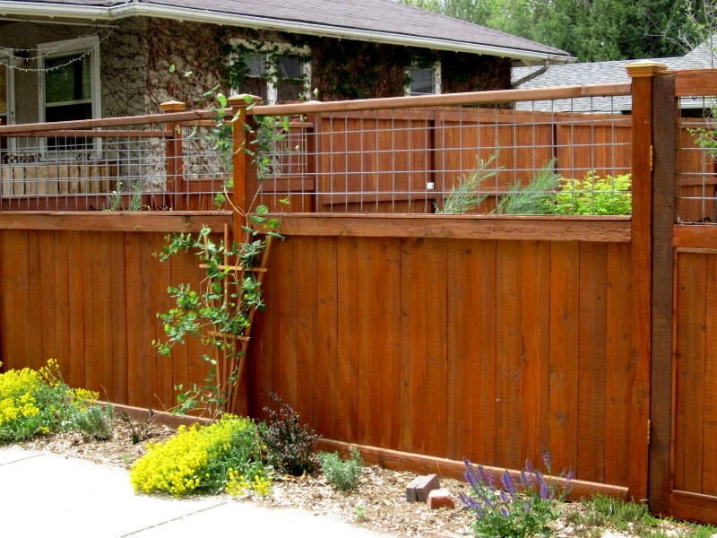 Cheap diy fence ideas for your garden privacy or
