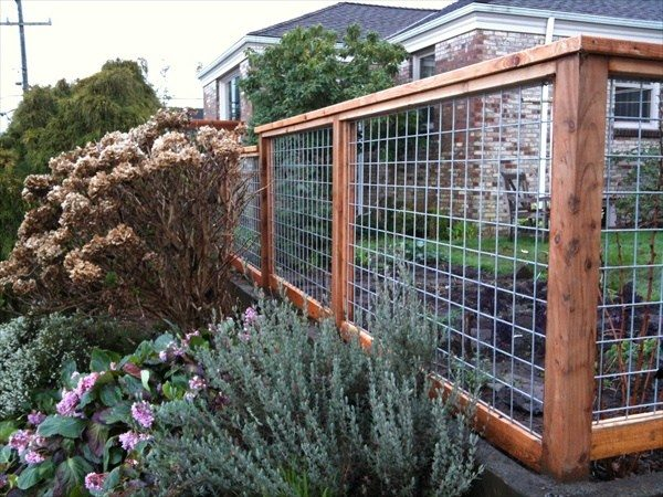 More wood frame wire fence ideas: - 27 Cheap DIY Fence Ideas For Your Garden, Privacy, Or Perimeter
