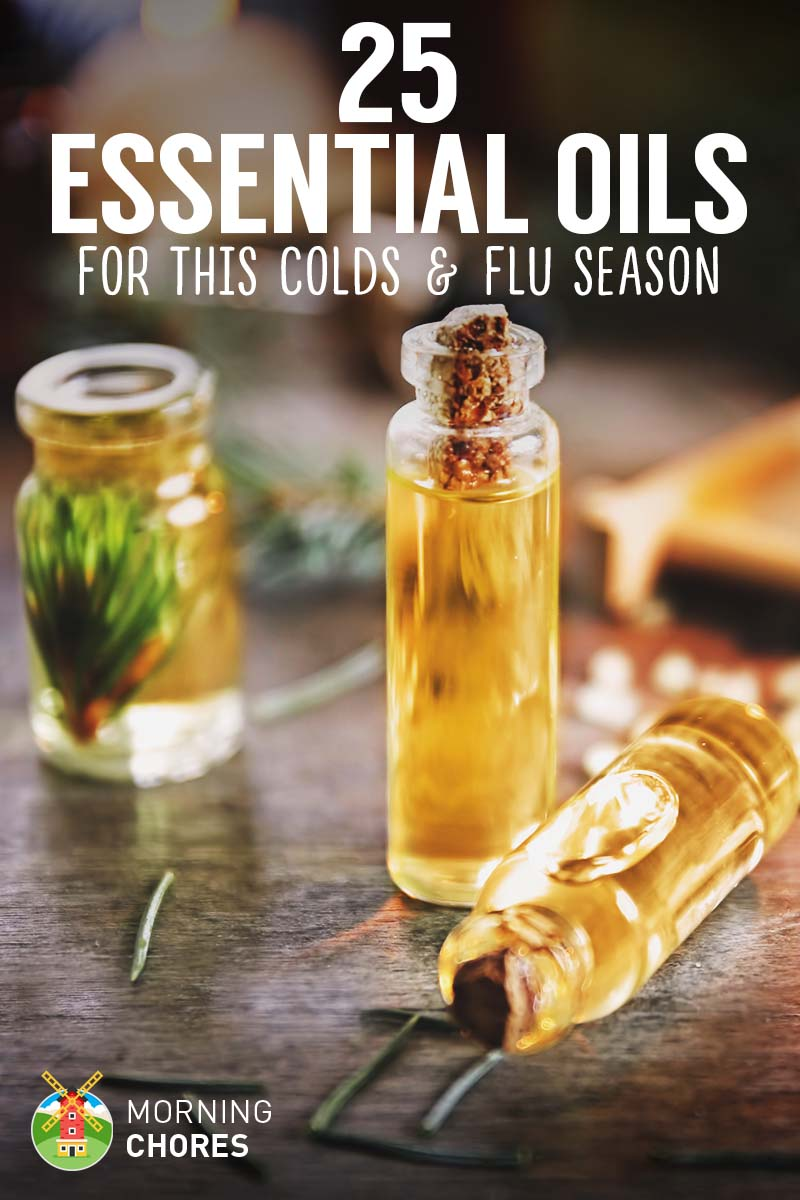 25 Essential Oils For Colds To Help You Through This Awful Flu Season