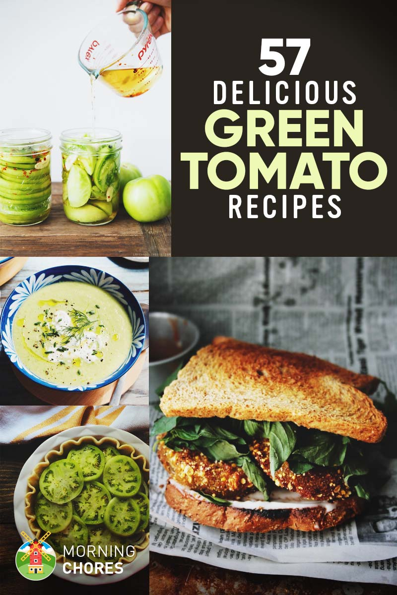 57 Fresh & Easy Green Tomato Recipes You'll Want to Make ...