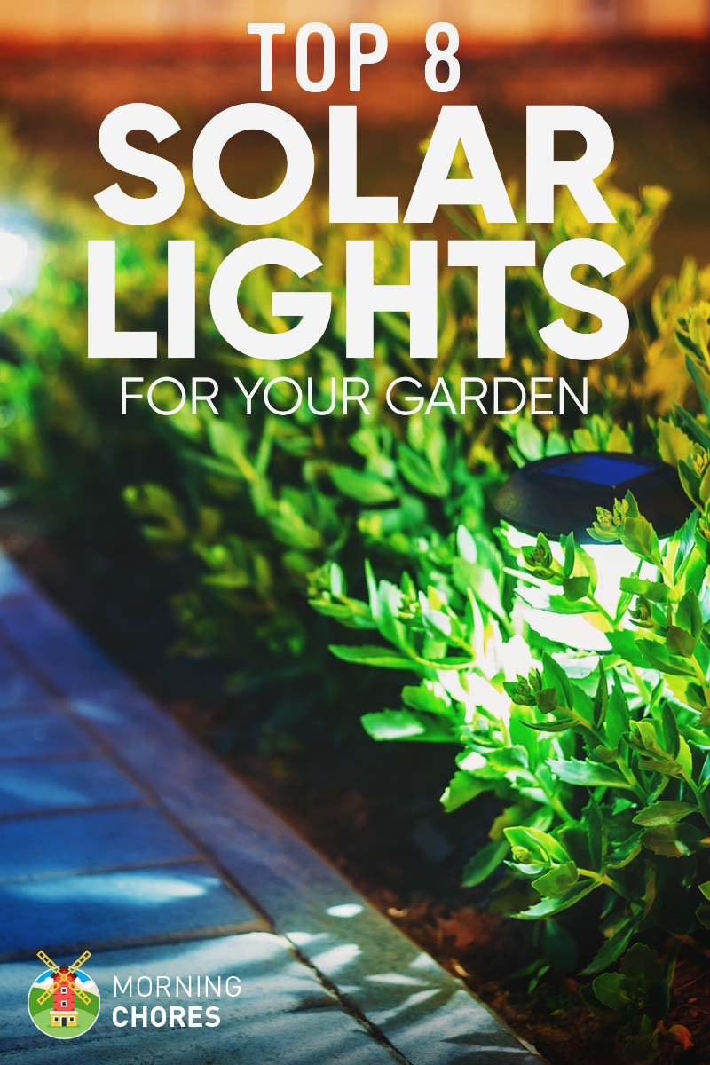 8 best brightest solar lights for garden outdoor product reviews aloadofball Choice Image