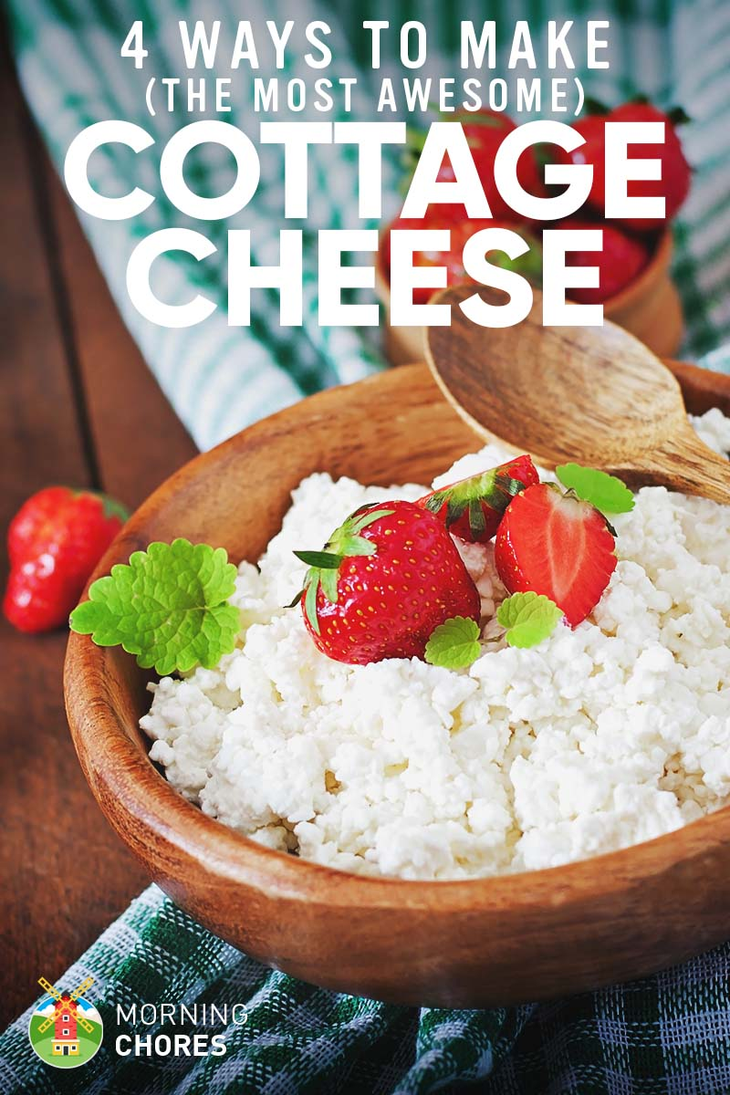 how to make the best cottage cheese ever in 4 different easy ways rh morningchores com