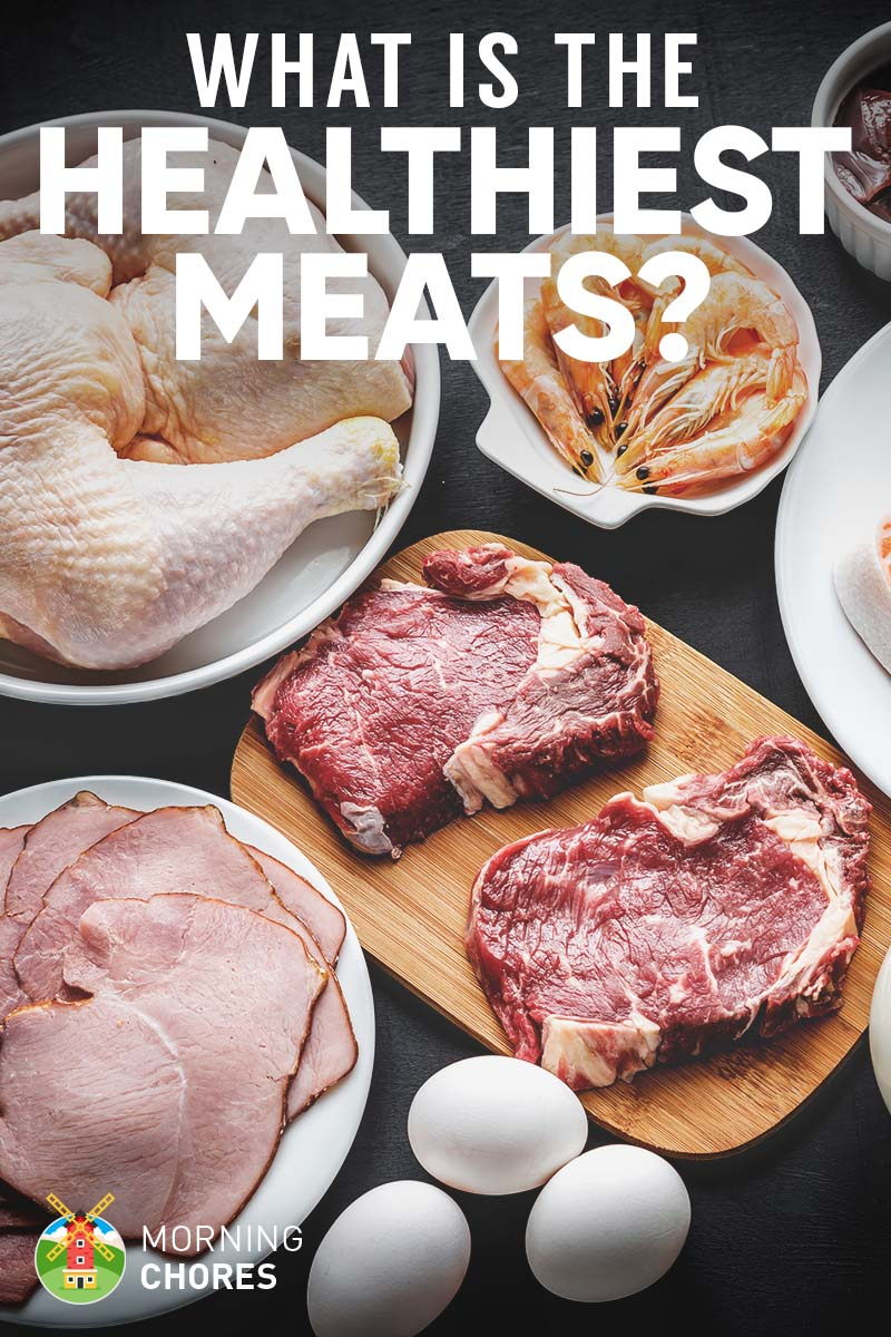 Choosing and Cooking Healthy Meats