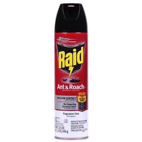 Raid Aerosol Spray Ant and Roach Killer