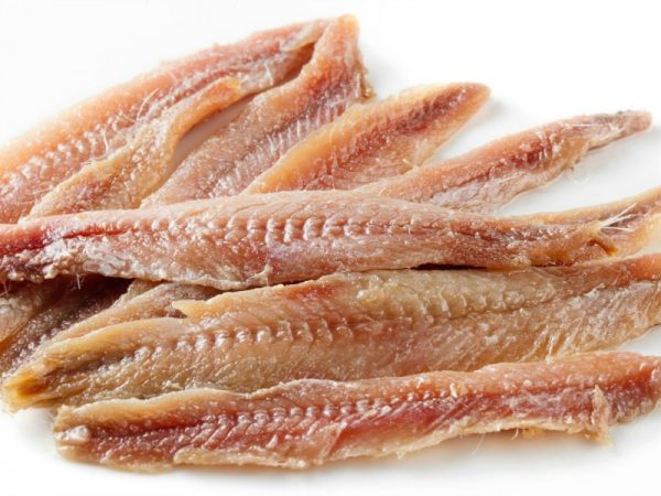 14 Healthiest Best Fish To Eat And 7 To Absolutely Steer Clear Of