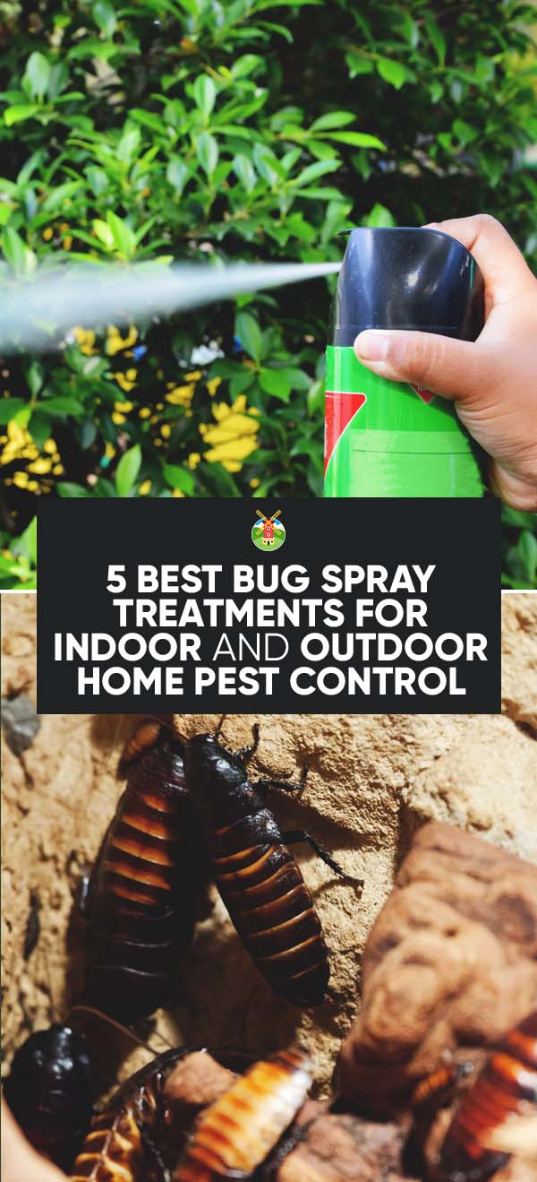 If Your Answer Is Yes Then A Fast And Effective Bug Spray Will Do The Trick Keep Home Pest Free