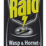 Raid Wasp & Hornet Killer
