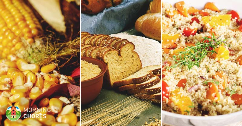 17 healthy grains to energize your body and improve your health forumfinder Gallery