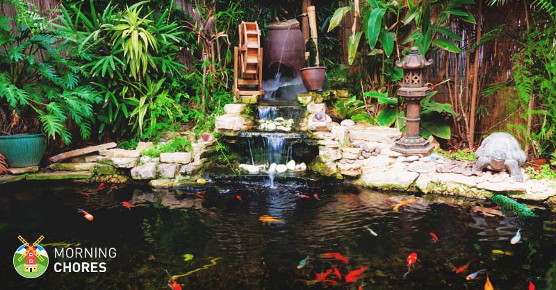 5 best pond filter reviews high quality easy to install for Koi pond water quality