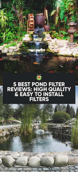5 Best Pond Filter Reviews High Quality Easy To Install