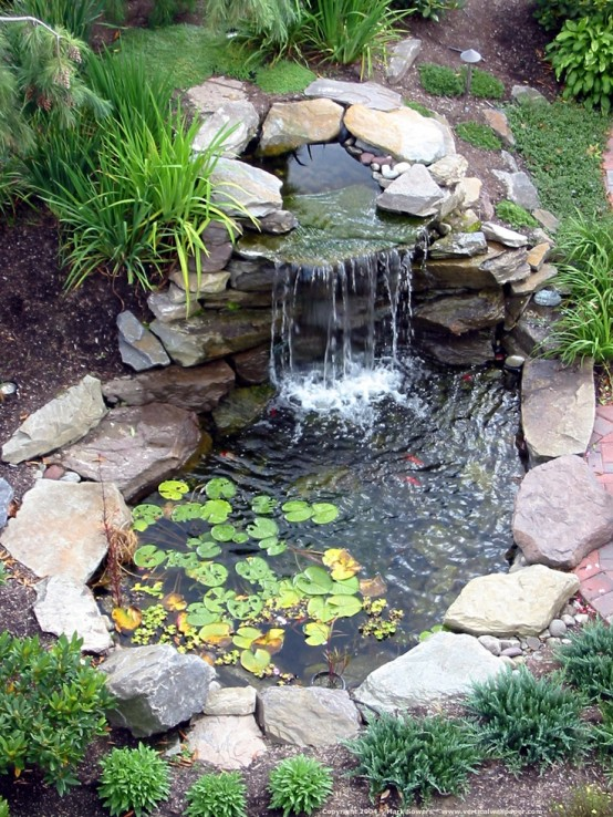 Beauty Even in a Small Package - 8 Big Reasons To Build Backyard Ponds To Improve Your Home