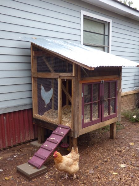 This Coop Is So Cool Looking. It Is A Raised Coop That Is Tucked Neatly  Against The Side Of A House. The Chickens Free Range As There Is No  Attached Run.