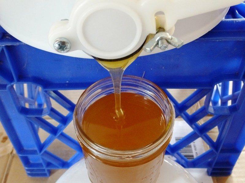 filling-honey