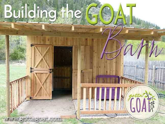 I Have Admired This Goat Barn For Quite Some Time When Knew We Were Moving And Id Need To Build A New Ran Across One