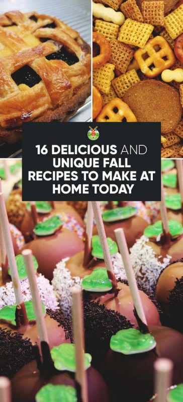 16 delicious fall recipes you can make at home today to experiment in the kitchen no matter what you prefer for your seasonal treat i hope it brings you happiness as only this time of year can forumfinder Choice Image