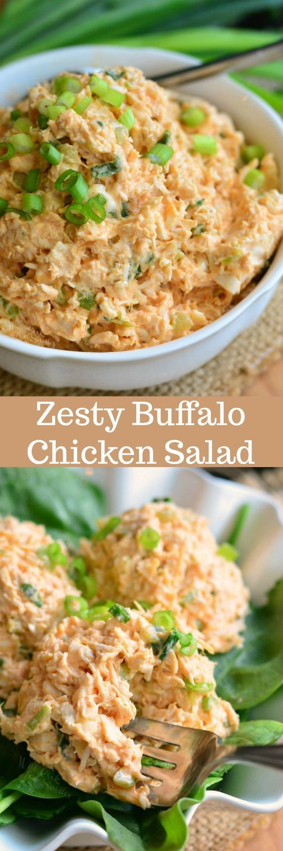 32 canned chicken recipes for delicious meals youll use time and again well this is another chicken salad recipe that would be great to utilize canned chicken with but this recipe is for those who like spice forumfinder Image collections