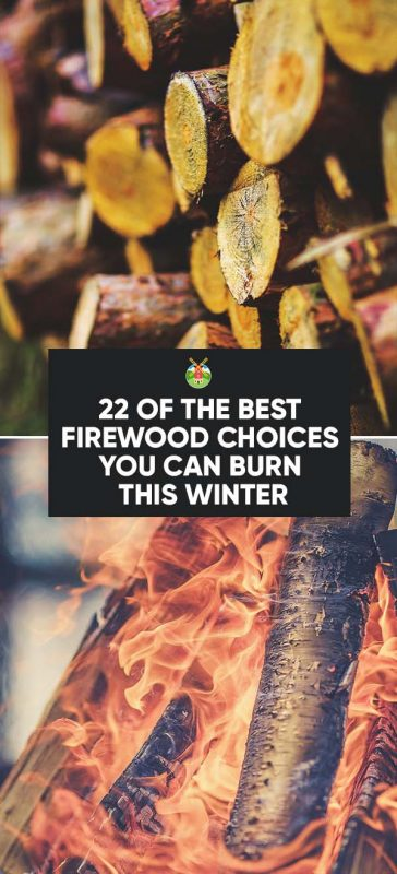 what type of winters do you have do you burn wood if so what is your favorite type of firewood why
