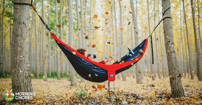 best the tree hammock chillout straps