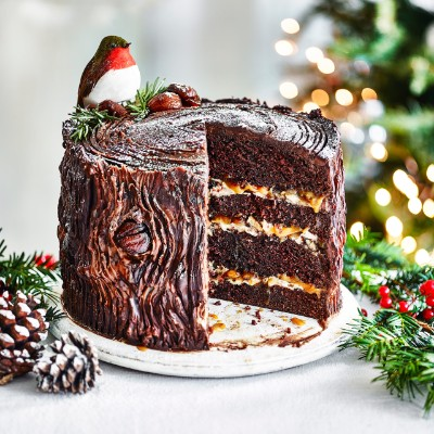 yule log cake recipe 18 enchanting yule log recipes to grace your table 1528