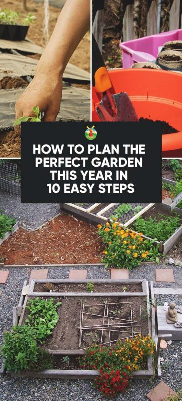 What Steps Do You Take In Planning Your Garden For The Year Even Plan Or Just It As