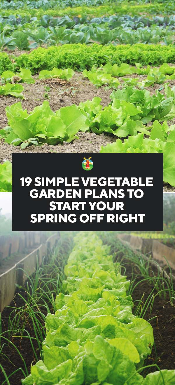 19 simple vegetable garden plans to start your spring off for Basic vegetable garden layout