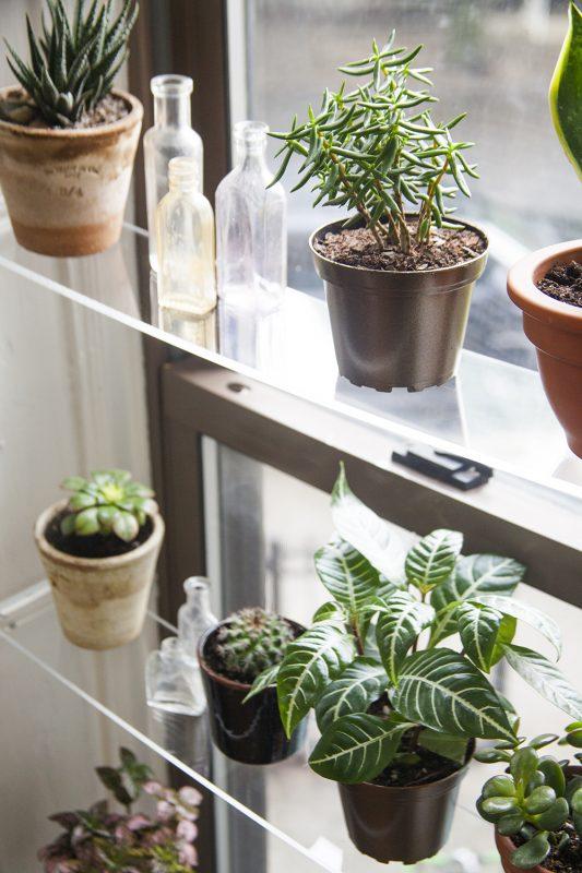 floating-window-shelves