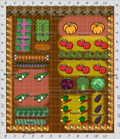 The Flower Vegetable Layout