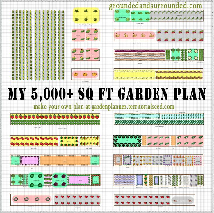 5,000 Square Foot Vegetable Garden Plan