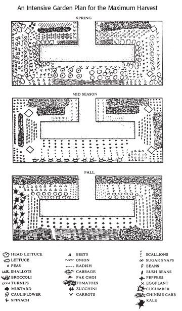 19 vegetable garden plans layout ideas that will inspire you 6 intensive garden plan for maximum harvest ccuart Image collections