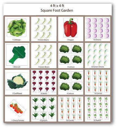 Square Foot Gardening Is A Great Way To Be Able To Fit A Variety Of  Vegetables Into One Vegetable Garden Space. Which Is Why I Love This Layout.
