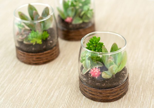 I Am A Sucker For Anything Mini, So These Tiny Shot Glass Terrariums Are An  Instant Winner For Me. My First Thought Was That These Could Be Lovely To  Label ...
