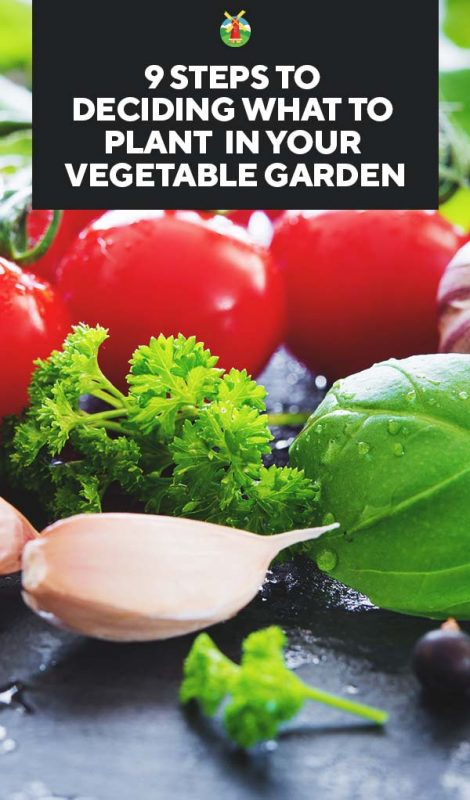Now That You Know What To Plant, You Might Wonder How Much To Plant. To  Answer Thatquestion, Use The Vegetable Garden Size Calculator.
