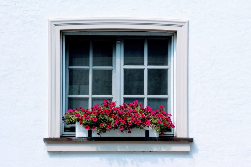 window box container