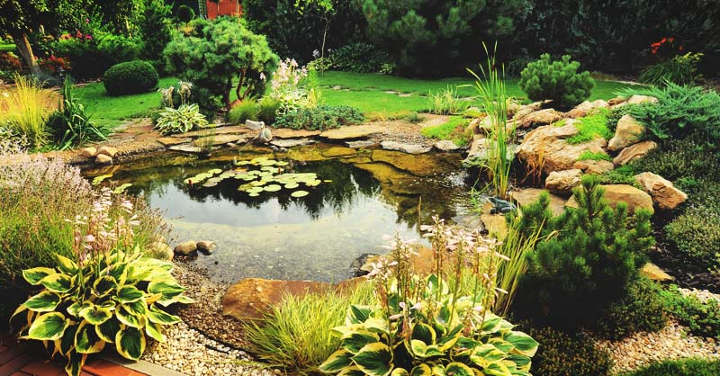 - How To Build A Beautiful Backyard Pond In 11 Steps