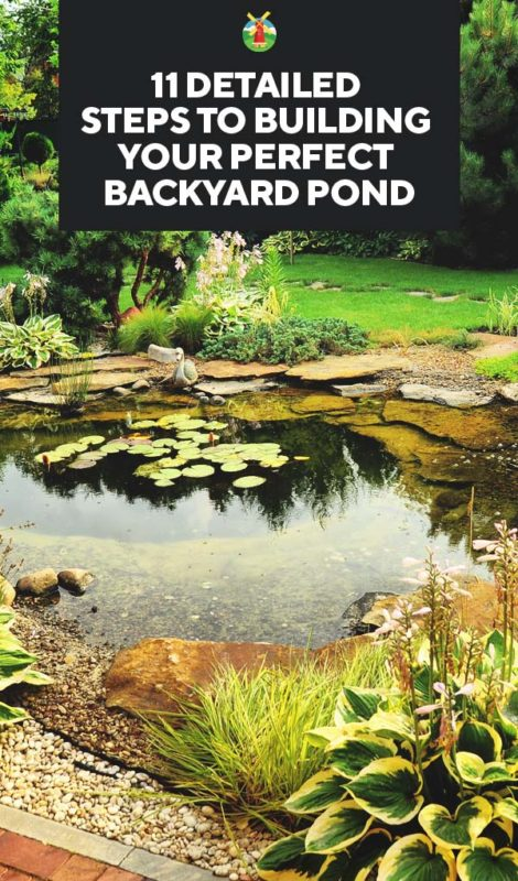 how to build a pond on your property
