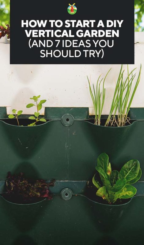 How To Start A Diy Vertical Garden And 7 Ideas You Should Try
