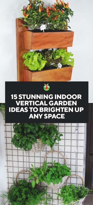 15 stunning indoor vertical garden ideas to brighten up any space pin 364x800g recycled pallet vertical garden workwithnaturefo