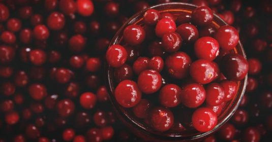 Growing Cranberries: How to Grow, Plant and Harvest Cranberries