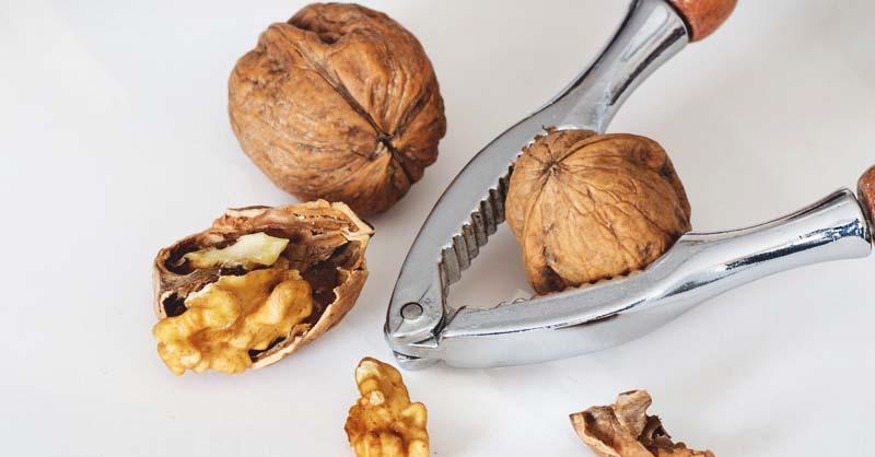 Image result for nut cracking