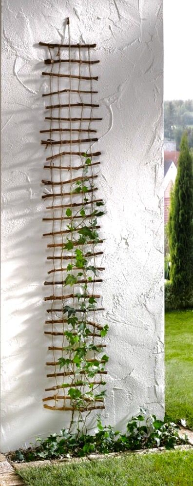 23 Functional Cucumber Trellis Ideas Guaranteed to Boost Your Harvest