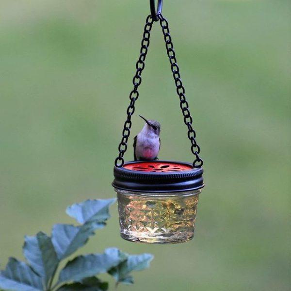 jelly jar hummingbird feeder