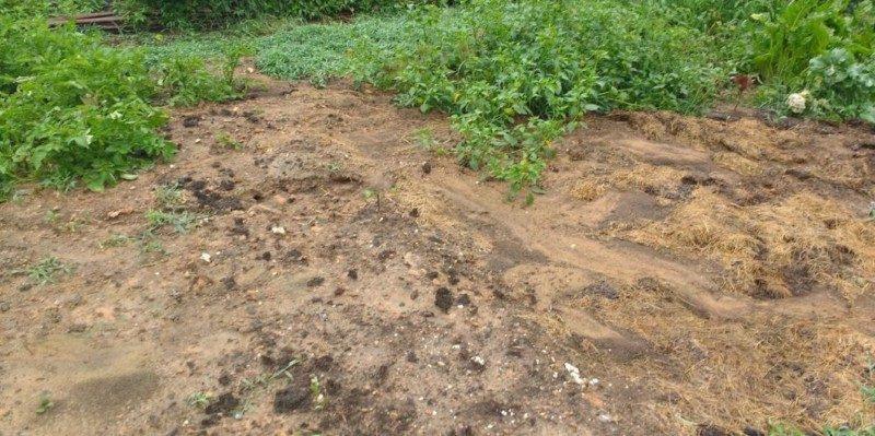 managing mud