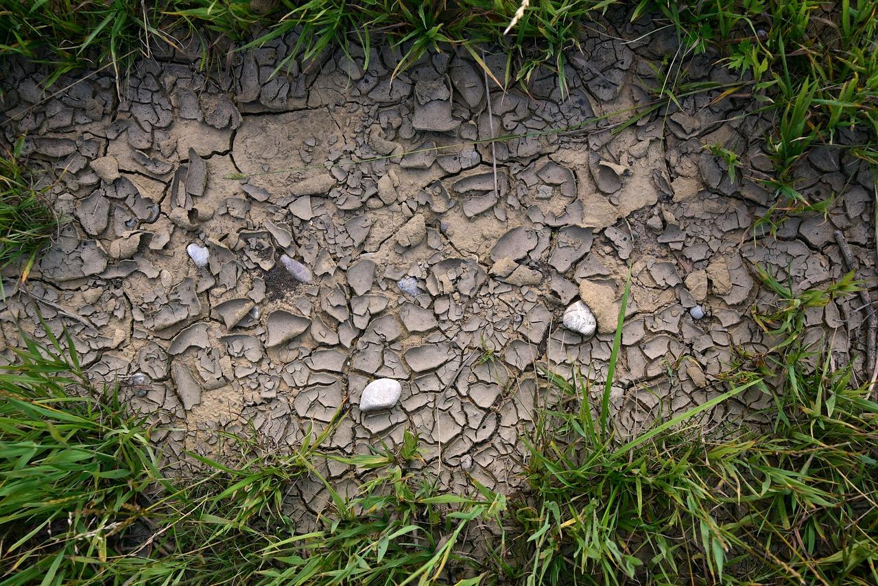 muddy areas
