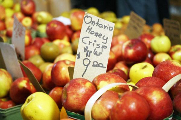 Honeycrisp apple variety at a farmers market