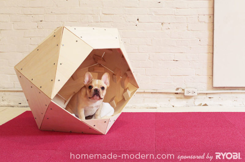 geodesic puppy dome