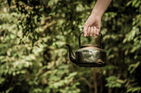 A hand holding a tea kettle - Boiling water is an effective natural weed killer