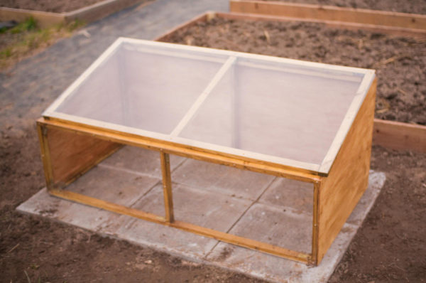 A wood cold frame sitting on concrete
