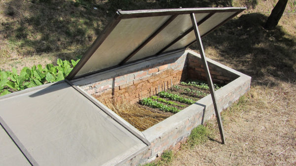 A cold frame in a garden with the door propped open