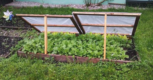 How to Use Low-Cost Cold Frames to Extend Your Gardening Year