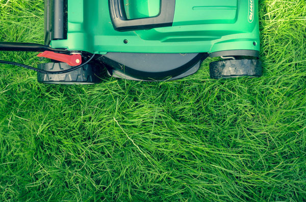 Mowing lawn as a natural weed killer
